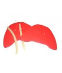 Recambios de goma palas pequeñas manoplas (de braza)