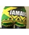 Bañador turbo lastre (carga, resistencia, peso) JAMAICA WILD